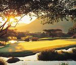Wild about south africa golf safari - Go Golfing
