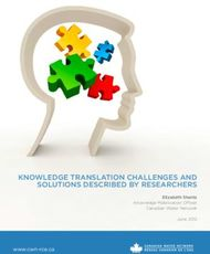 KNOWLEDGE TRANSLATION CHALLENGES AND SOLUTIONS DESCRIBED BY RESEARCHERS