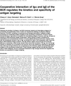 Cooperative interaction of Ig a and Ig b of the BCR regulates the kinetics and specificity of antigen targeting