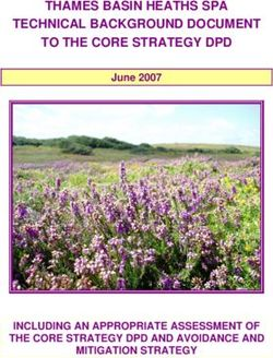 THAMES BASIN HEATHS SPA TECHNICAL BACKGROUND DOCUMENT TO THE CORE STRATEGY DPD