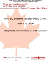 University of Toronto Social Economy Centre Projects by Cluster