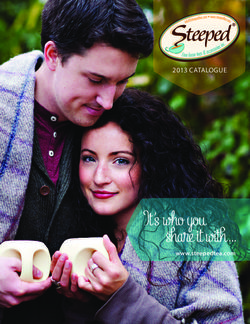Steeped Tea 2013 Catalogue