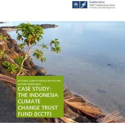 CASE STUDY: THE INDONESIA CLIMATE CHANGE TRUST FUND (ICCTF)