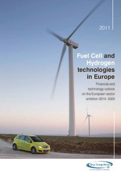 Fuel Cell and Hydrogen technologies in Europe