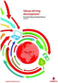 Values driving development - Corporate Responsibility Report 2008-09 - ...