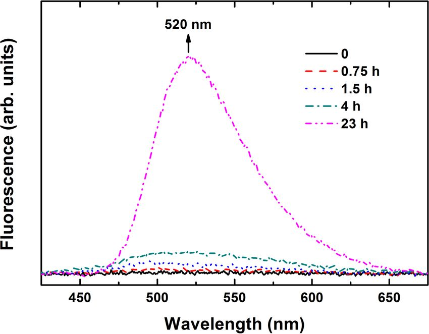 Synthesis and Characterization of Water Soluble Fluorescent