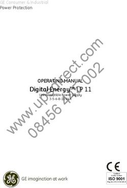 Digital Energy LP 11 OPERATING MANUAL