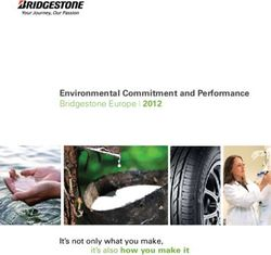 Environmental Commitment and Performance Bridgestone Europe 2012