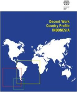 INDONESIA - Decent Work Country Profile
