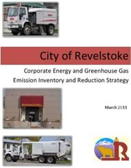 City of Revelstoke - Corporate Energy and Greenhouse Gas Emission Inventory and Reduction Strategy