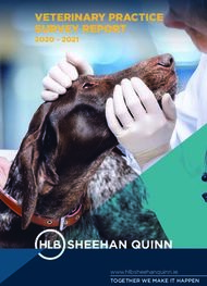 VETERINARY PRACTICE SURVEY REPORT 2020 - 2021 - www.hlbsheehanquinn.ie - ...
