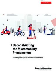 Deconstructing the Micromobility Phenomenon