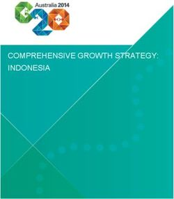 COMPREHENSIVE GROWTH STRATEGY: INDONESIA