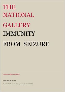 THE NATIONAL GALLERY IMMUNITY FROM SEIZURE