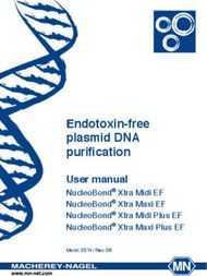 Endotoxin-free plasmid DNA purification