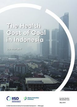 The Health Cost of Coal in Indonesia