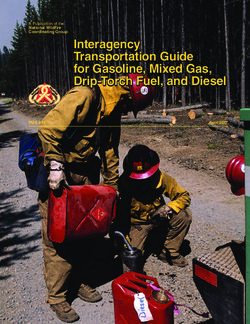 Interagency Transportation Guide for Gasoline, Mixed Gas, Drip-Torch Fuel, and Diesel