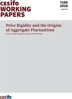 Price Rigidity and the Origins of Aggregate Fluctuations