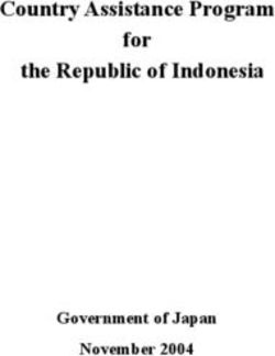 Country Assistance Program for the Republic of Indonesia