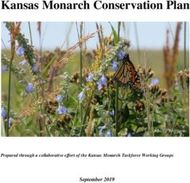 Kansas Monarch Conservation Plan