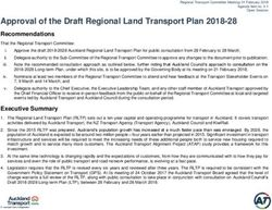 Approval of the Draft Regional Land Transport Plan 2018-28