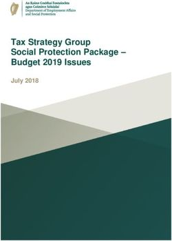 Tax Strategy Group Social Protection Package - Budget 2019 Issues