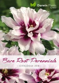 Bare Root Perennials Catalogue 2018 - Darwin Plants