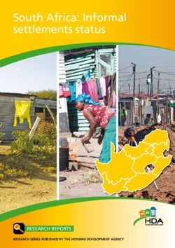 South Africa: Informal settlements status