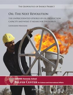 Oil: the next revolution the unprecedented upsurge of oil production capacity and what it means for the world