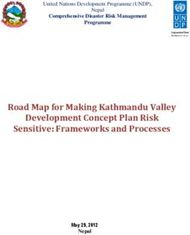 Road Map for Making Kathmandu Valley Development Concept Plan Risk Sensitive: Frameworks and Processes