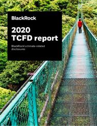 2020 TCFD report BlackRock's climate-related disclosures