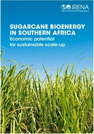 SUGARCANE BIOENERGY IN SOUTHERN AFRICA - Economic potential for sustainable ...
