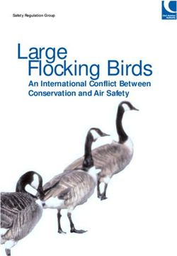 Large Flocking Birds - An International Conflict Between Conservation and Air Safety