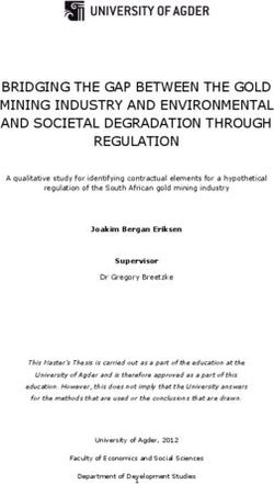 BRIDGING THE GAP BETWEEN THE GOLD MINING INDUSTRY AND ENVIRONMENTAL AND SOCIETAL DEGRADATION THROUGH REGULATION