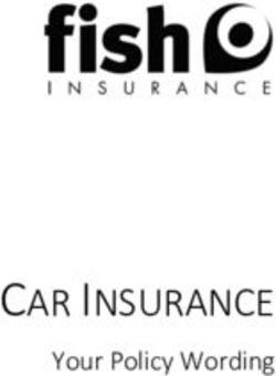 CAR INSURANCE - Your Policy Wording