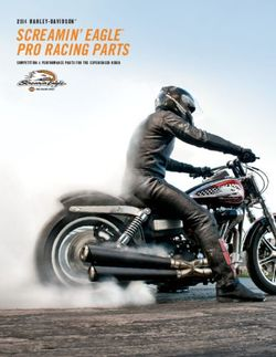 2014 Harley-Davidson Screamin' Eagle Pro Racing Parts. Competition & Performance Parts for the Experienced Ride.