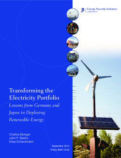Transforming the Electricity Portfolio Lessons from Germany and Japan in Deploying Renewable Energy