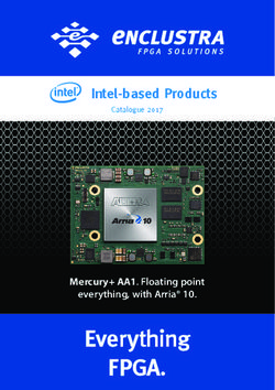 Intel-based Products - Enclustra Catalogue 2017