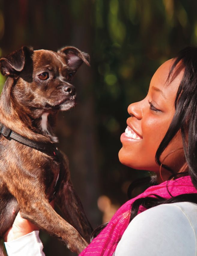 keep pet in home Keeping pets at home has several benefits — and if you're among those who has always wanted to keep a pet, let us convince you to go ahead and get one home pets can enhance your mood whether you believe it or not, pets are a great way to improve your mood and temperament.