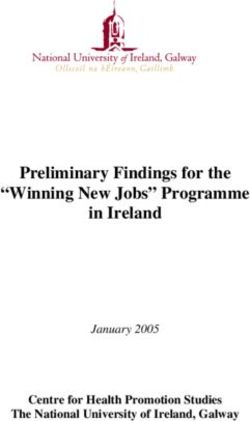 "Preliminary Findings for the ""Winning New Jobs"" Programme in Ireland"