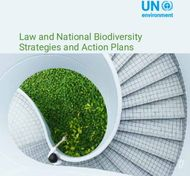 LAW AND NATIONAL BIODIVERSITY STRATEGIES AND ACTION PLANS - Law and National ...