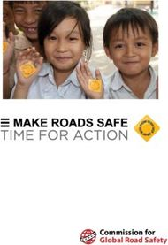 Commission for Global Road Safety - FIA Foundation