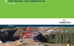 DRAFT REGIONAL LAND TRANSPORT PLAN