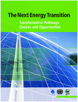 The Next Energy Transition Transformative Pathways, Choices and Opportunities