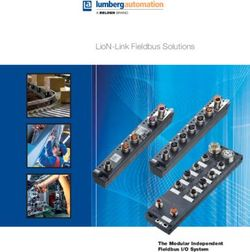 LioN-Link Fieldbus Solutions The Modular Independent Fieldbus I/O System