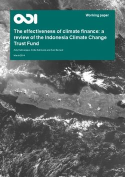 The effectiveness of climate finance: a review of the Indonesia Climate Change Trust Fund
