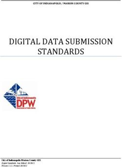 DIGITAL DATA SUBMISSION STANDARDS CITY OF INDIANAPOLIS / MARION COUNTY GIS