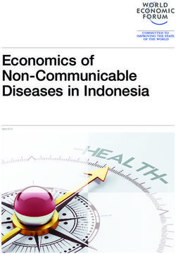 Economics of Non-Communicable Diseases in Indonesia