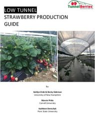 LOW TUNNEL STRAWBERRY PRODUCTION GUIDE
