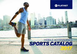 Platinet - Mobile Accessories Sports Catalog 2017